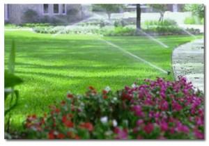 irrigation-300x210
